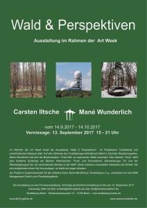 Plakat Wald & Perspektiven artweekberlin Teufelsberg